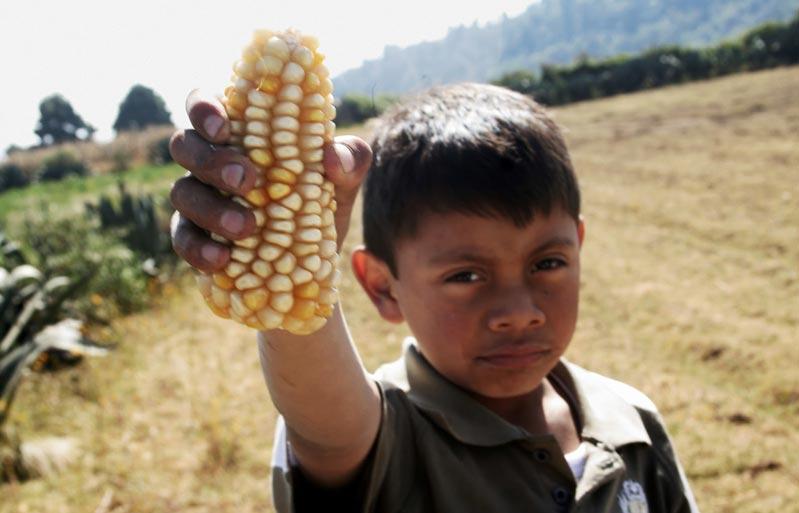 El Trabajo Sucio de Monsanto